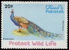 Postage stamp from Pakistan - SG 411 (1976) - with peacock subject
