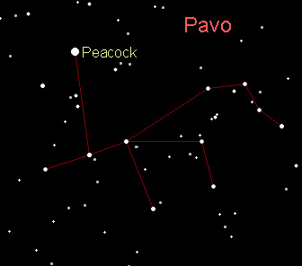 Astronomy: The Peacock: Pavo; constellation